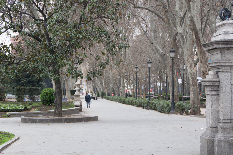 Madrid-3104