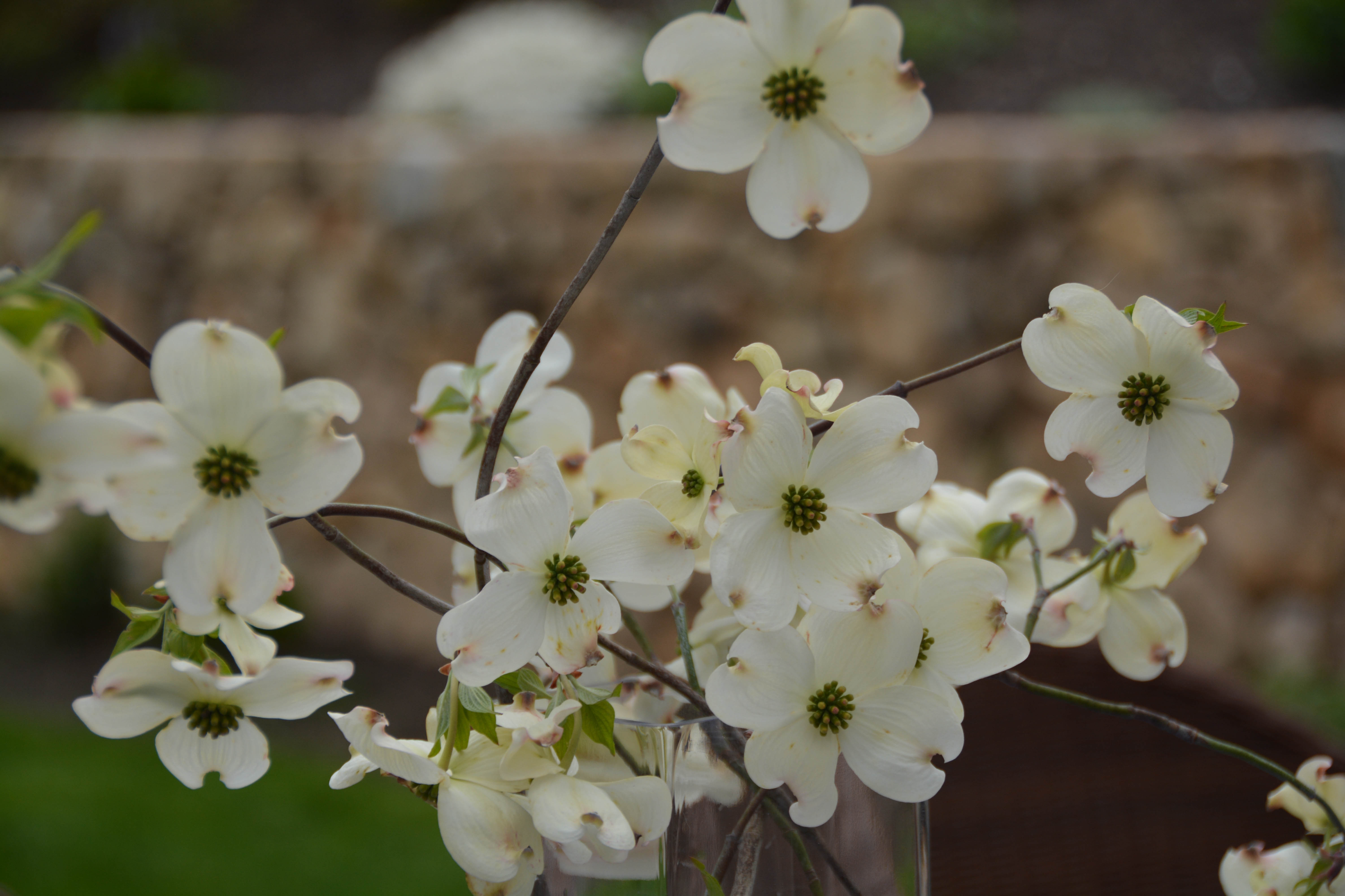 Navy And White Blossoms Entertablement